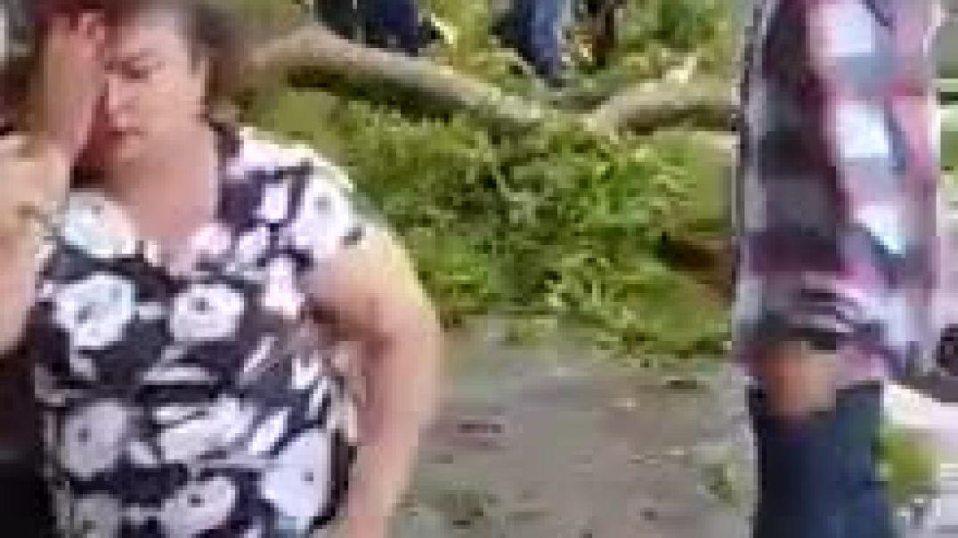 Şəkidə ağac faciəsindən növbəti görüntülər